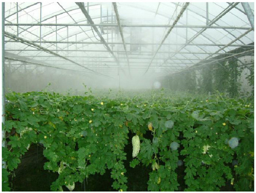 Greenhouse Misting Watering Systems