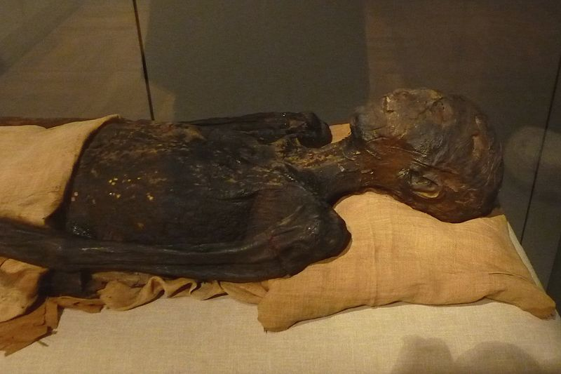 Mummy of the ancient Egyptian princess ahMose, daughter of 17th Dynasty pharaoh seQenenRe and his sister-wife sitDjehuti.